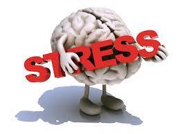 Stresul, inamicul numarul 1