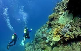 Scuba Diving, sport extrem, terapie si team building la Marea Neagra